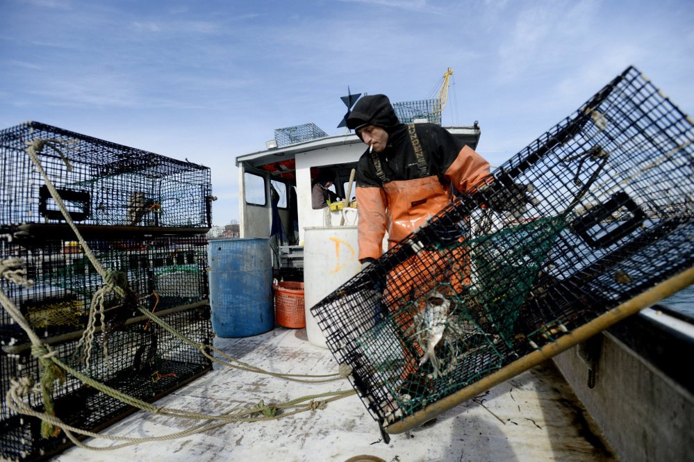 A lobsterman working. Credit: Press Herald
