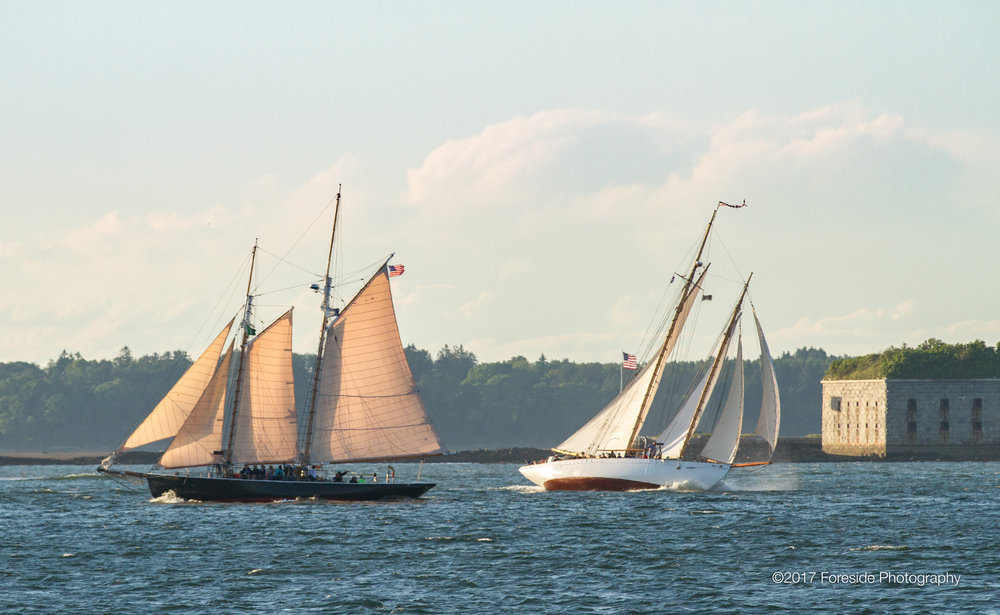 Host schooners Bagheera and Wendameen