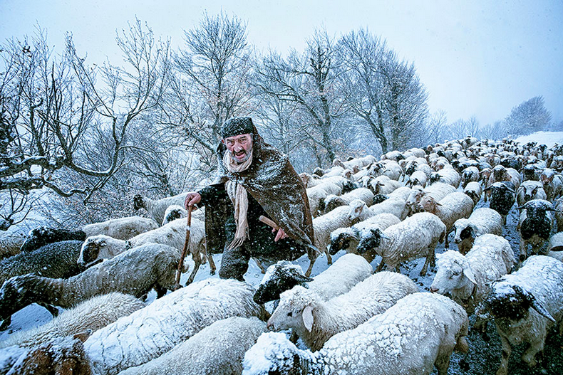An old shepherd surprised by a snow storm in Gilan, northern Iran.
