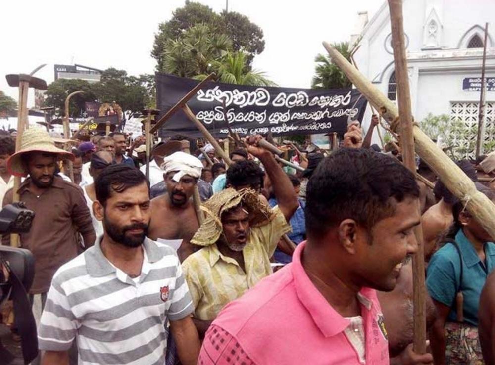 Local farmers protest. Photo credit:Adaderana.lk