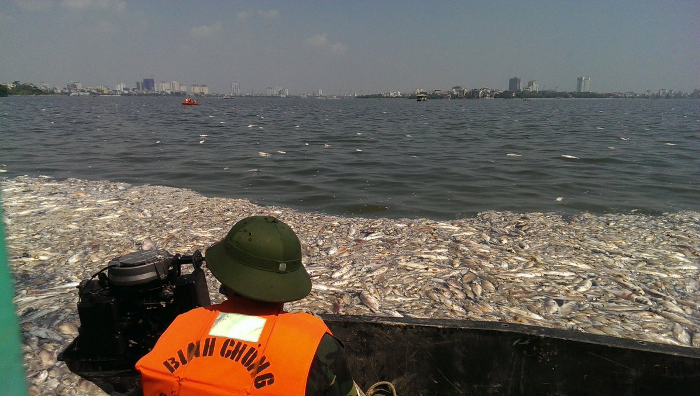 Cleanup operations underway at Hanoi's West Lake. Credit: Tan Qiuyi/ChannelNewsAsia.com