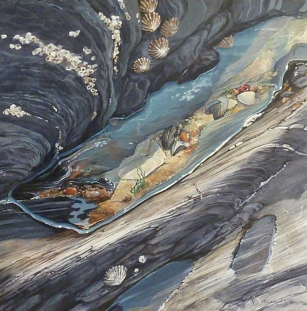 Welsh Rockpool   acrylic on canvas-board  40 x 40cm, 2013  private collection *
