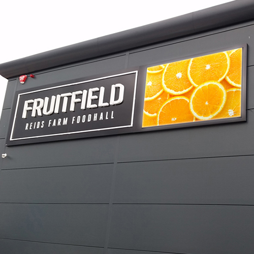 fruitfield-orange-square.jpg