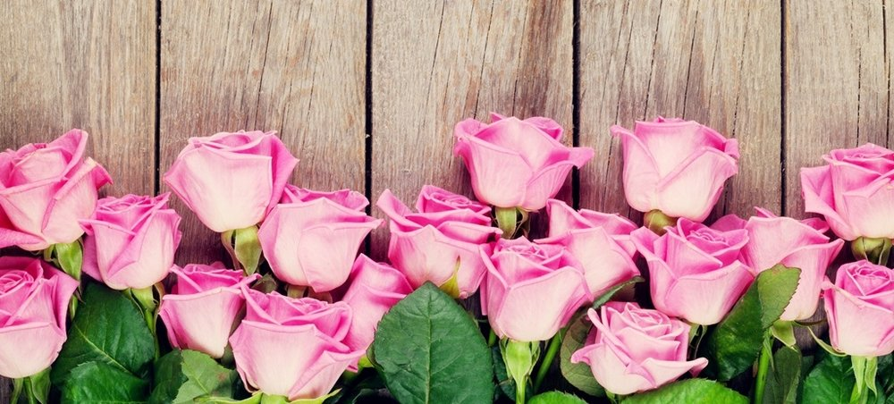 Pink-roses-wood-background_1024x768.jpg