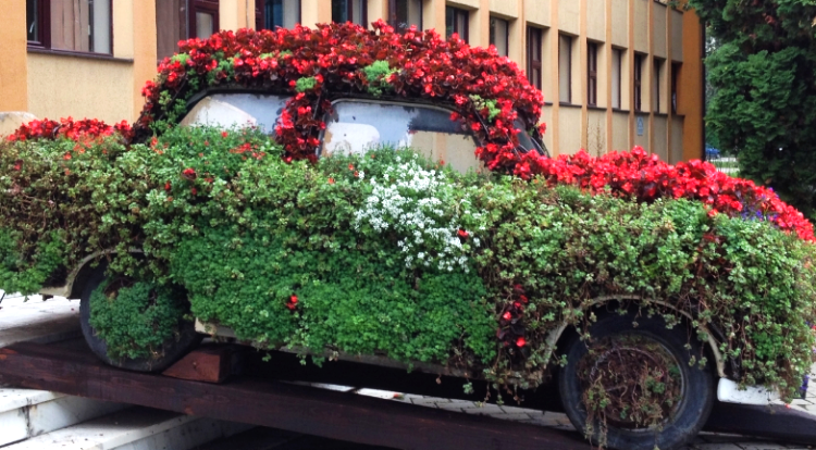The most flowery mode of transportation in the world in is Gura Humorului, Romania