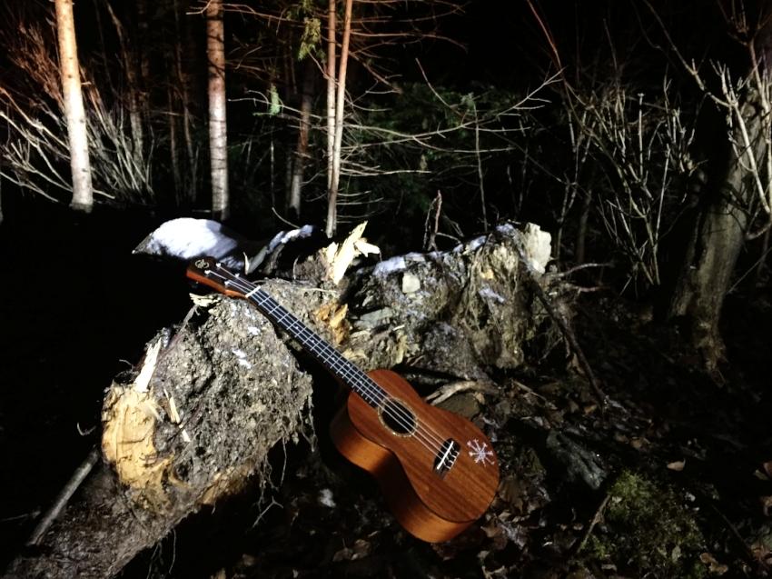 On a big adventure, ukulele needs rest too
