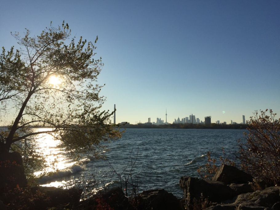 A view onto Lake ontario and the Toronto skyline