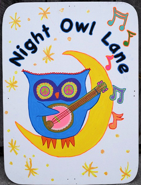 2018-09-sign-Night-Owl-Lane.jpeg
