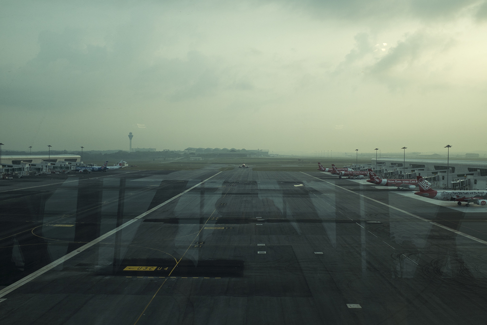 The view from out the terminal window.