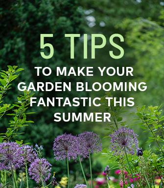 5 Tips Garden Blooming