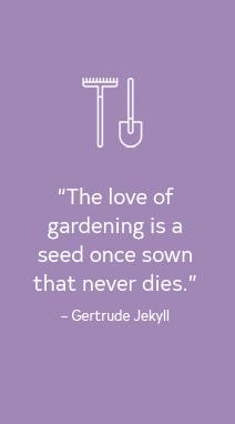 02 5 Tips Garden Blooming