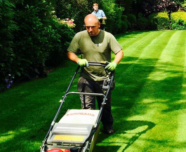 Garden Maintenance & Lawncare