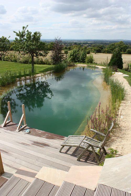 A Natural Swimming Pool