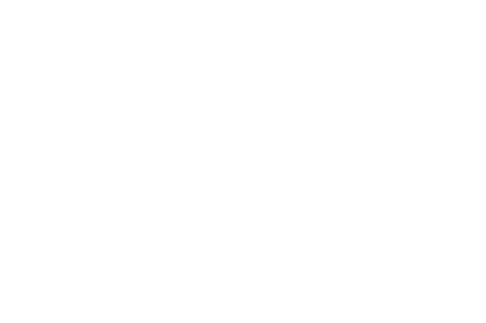WINNER - BEST COMEDY - PORTOBELLO FILM FESTIVAL - 2017 whit.png