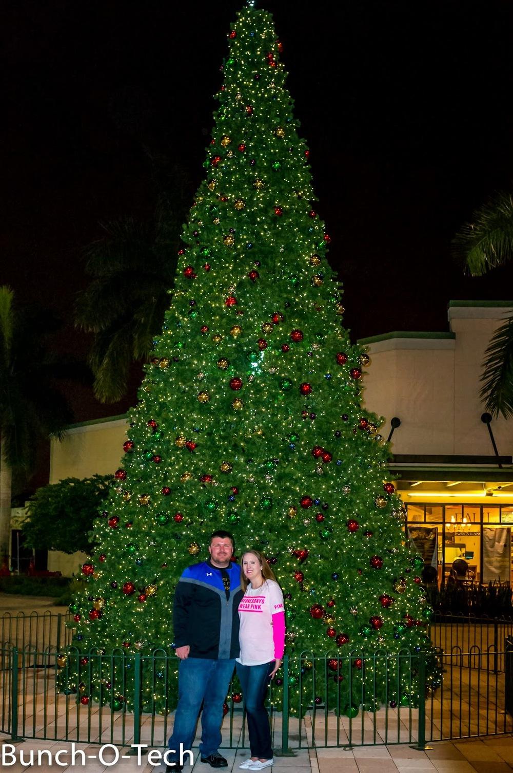 Florida-11-November%2B20%2C%2B2014.jpg