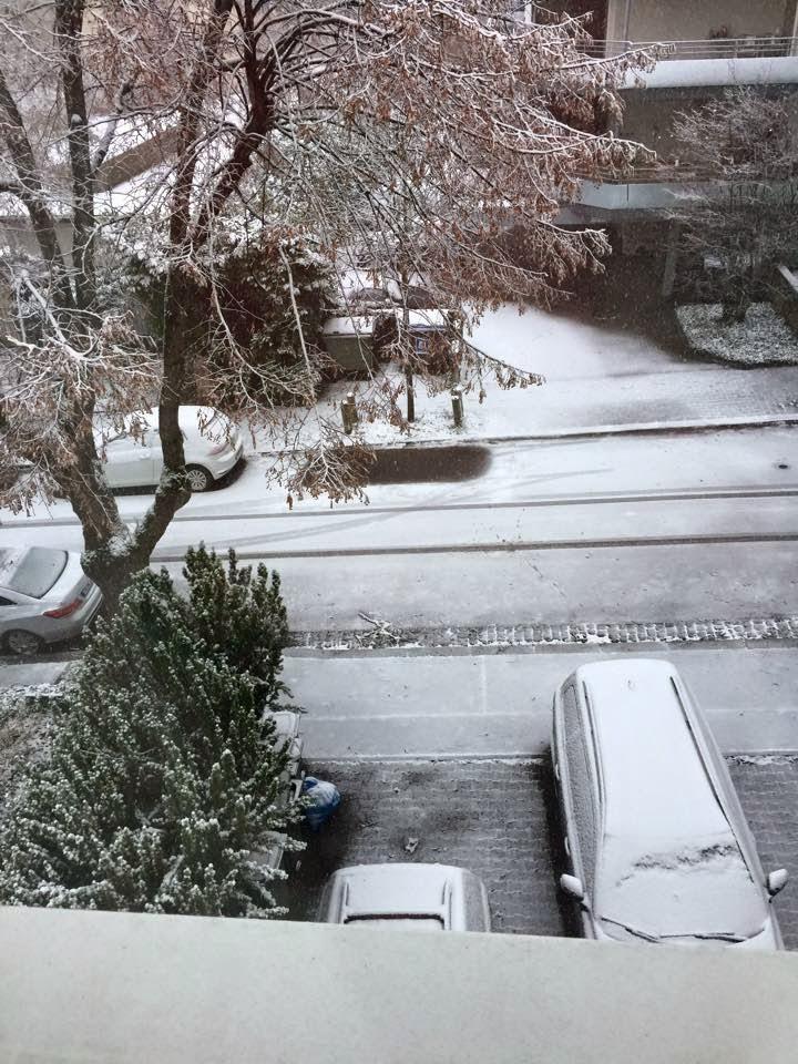 snow12-27-2014.jpg
