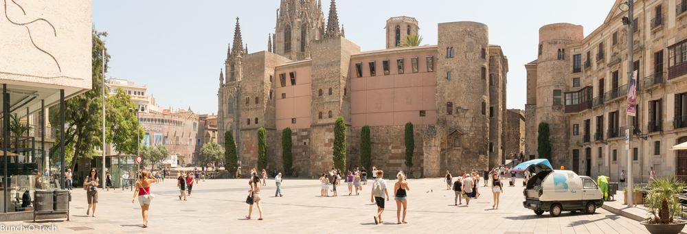 Barcelona Cathedral is in the back