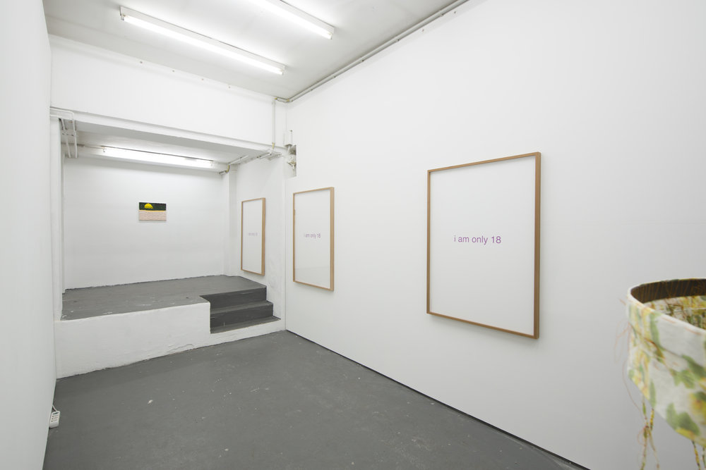 Installation view Johanne, 2018-8.jpg