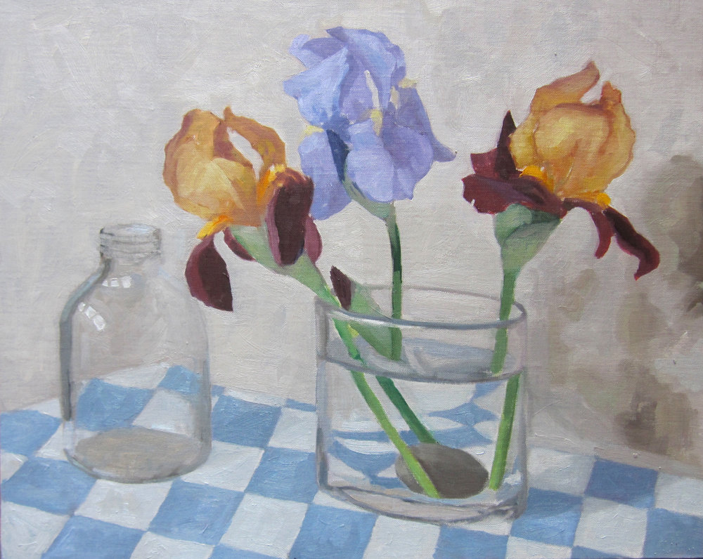 Iris Sketch (2011)