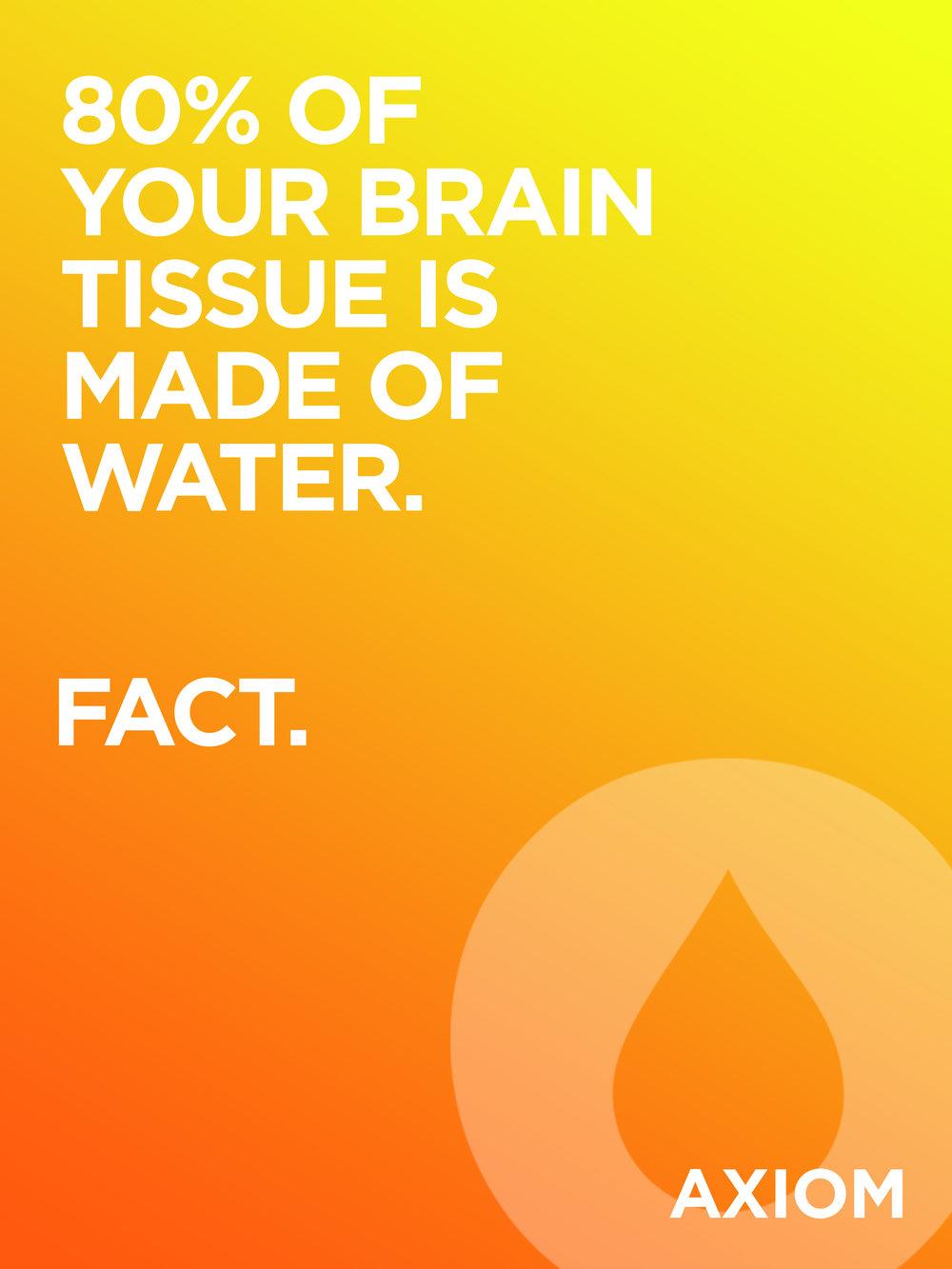 brain_tissue.jpg