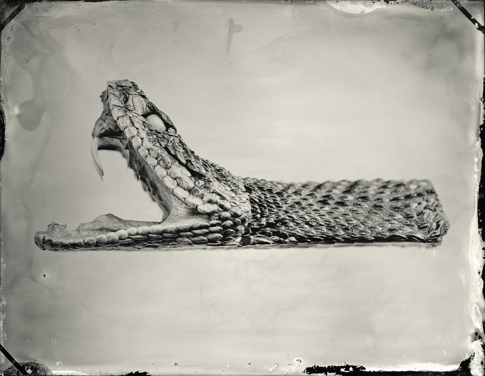 24x30_pick_tintype_high020_sec.jpg