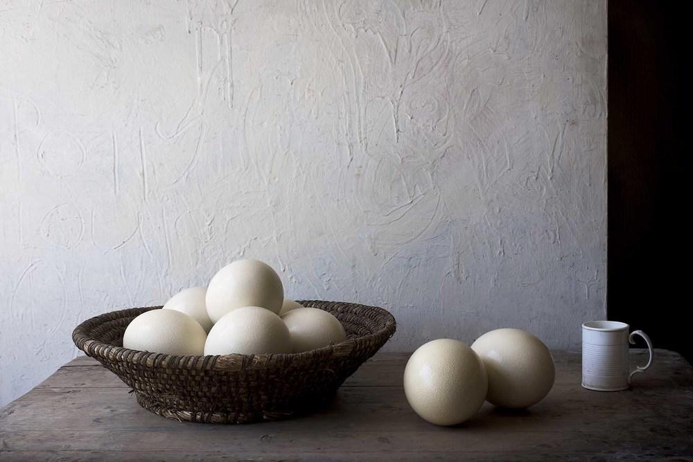 Ostrich Eggs.jpg