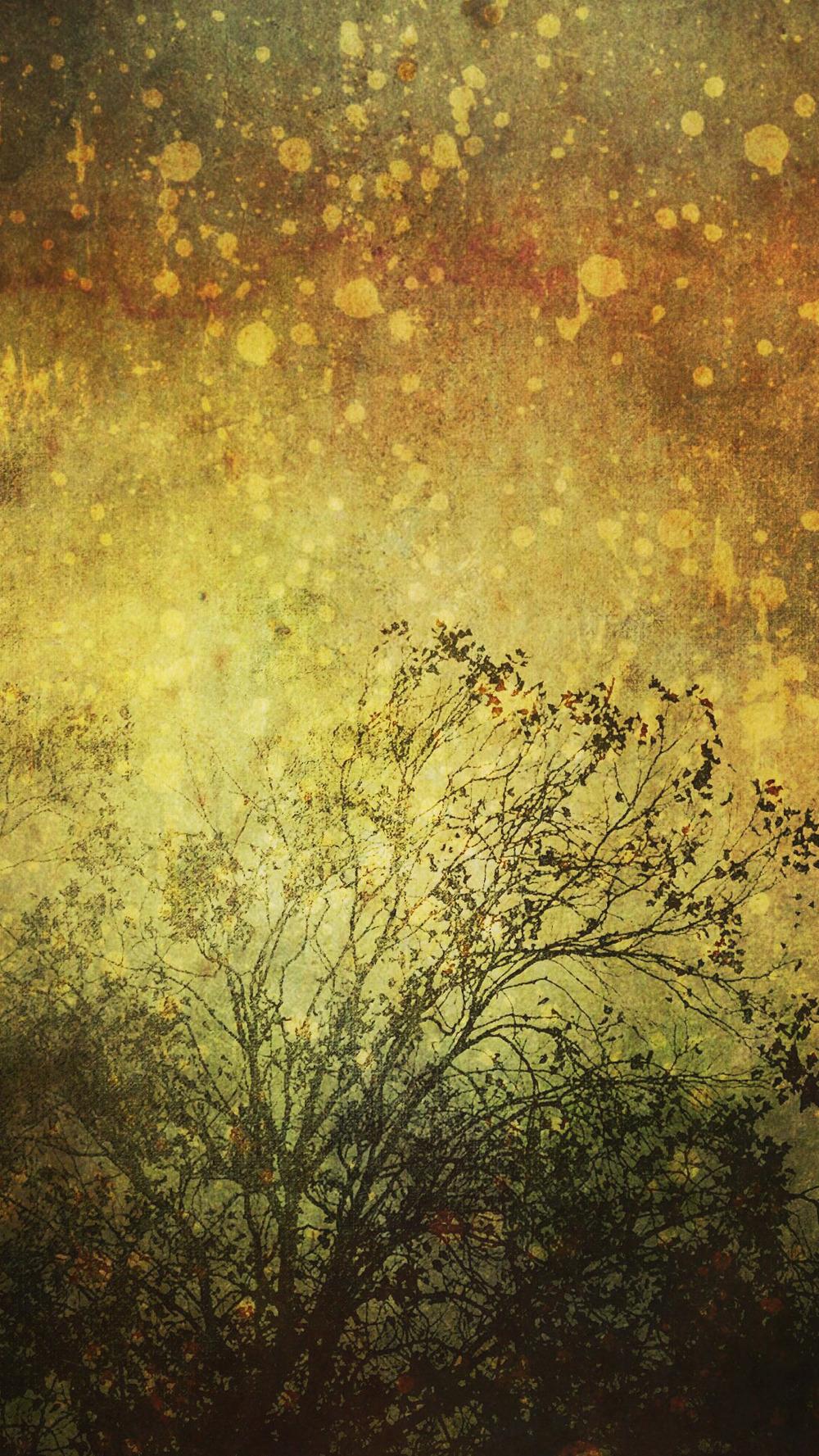goldwoods_screen.jpg