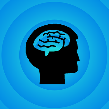 brain-494152_640.png