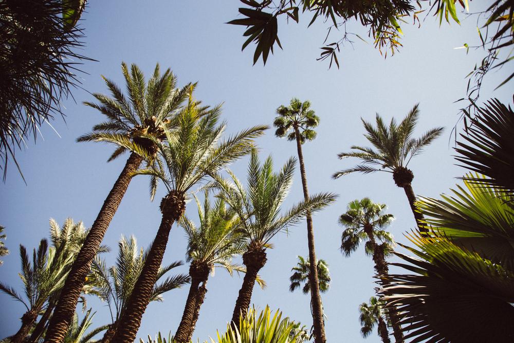 marrakech01007.jpg