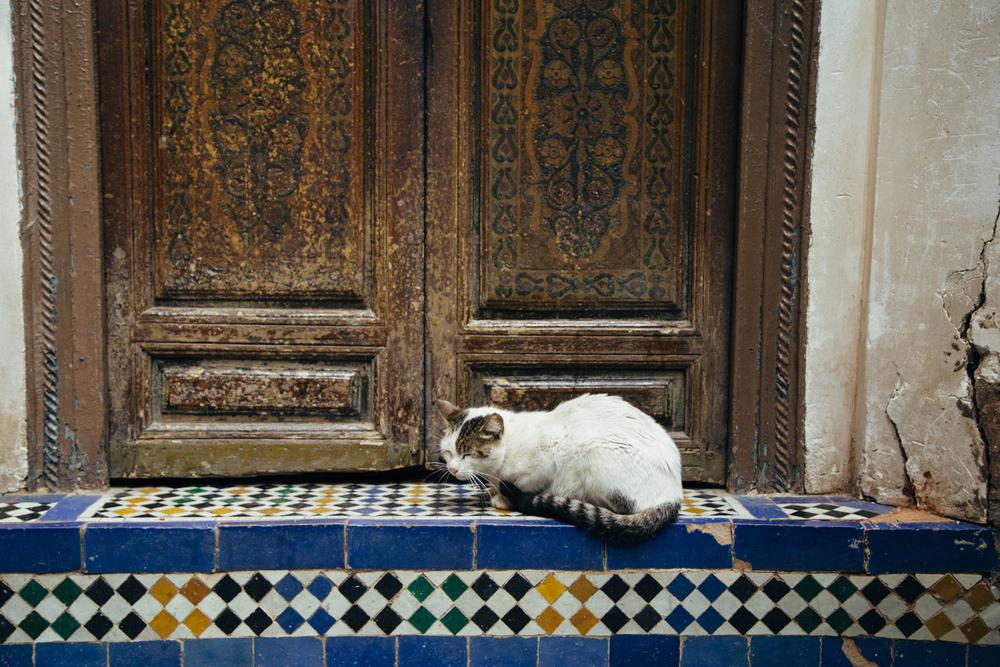 marrakech02010.jpg