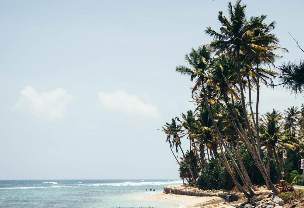 Sri Lanka_0220.jpg
