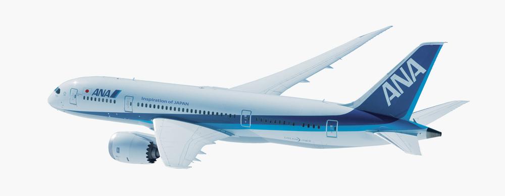 ANAplane.jpg