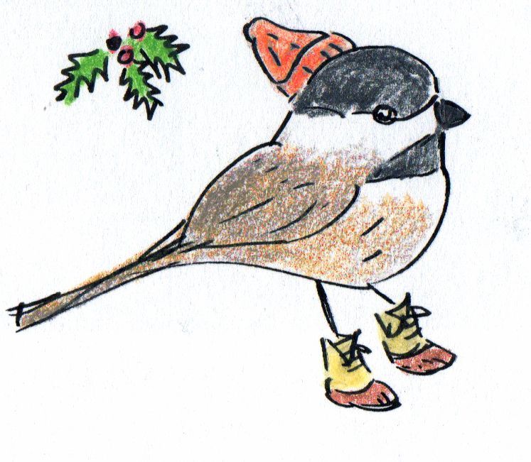 maine_chickadee.jpg