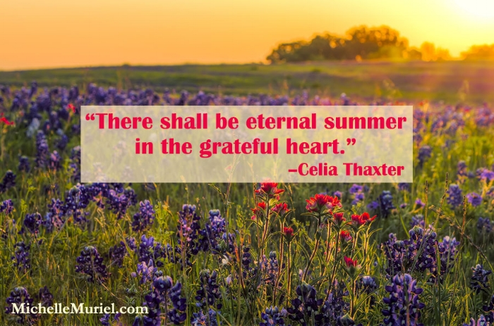 There shall be eternal summer in the grateful heart. Celia Thaxter
