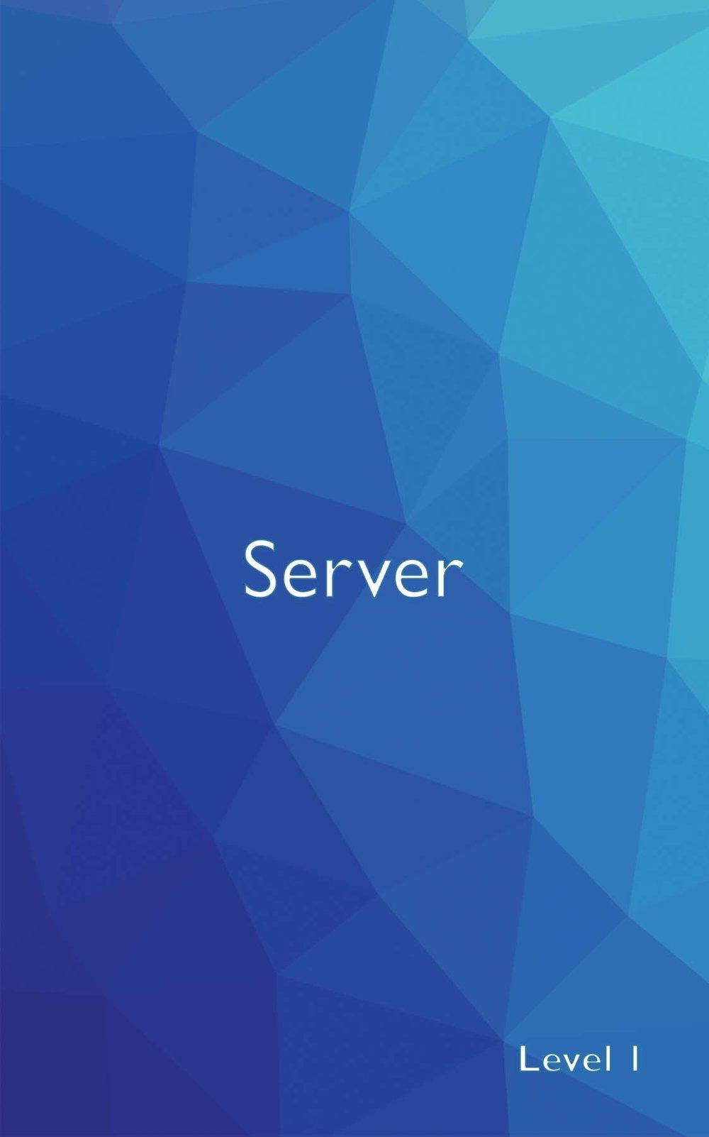 9-server-back.jpg
