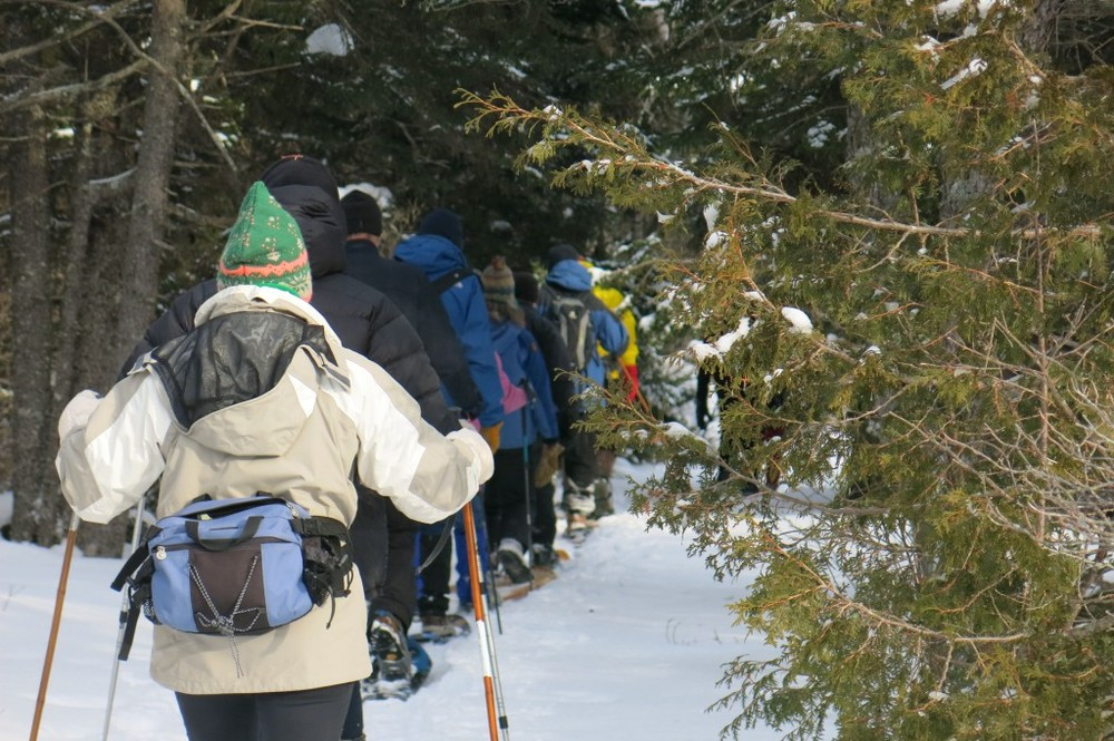 Our happy group of snowshoers clomped along the Alder Trail, where we saw tracks of deer, snowshoe hares, squirrels, possibly a coyote and other animals.