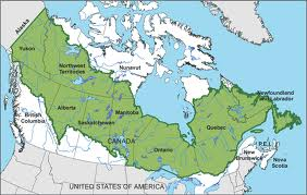 A map of North America's boreal forest, prepared by the Boreal Songbird Initiative.