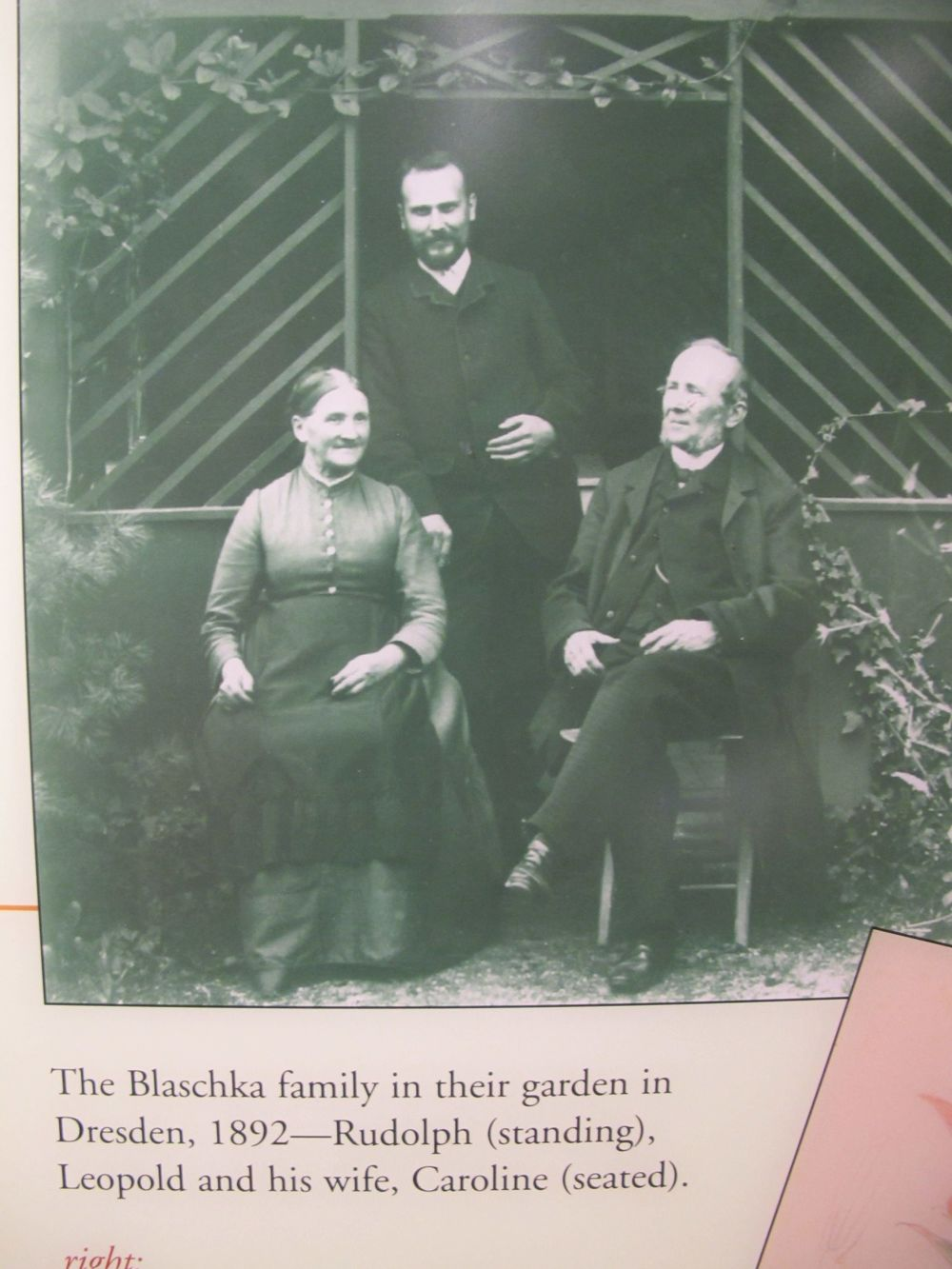 The Blaschkas.