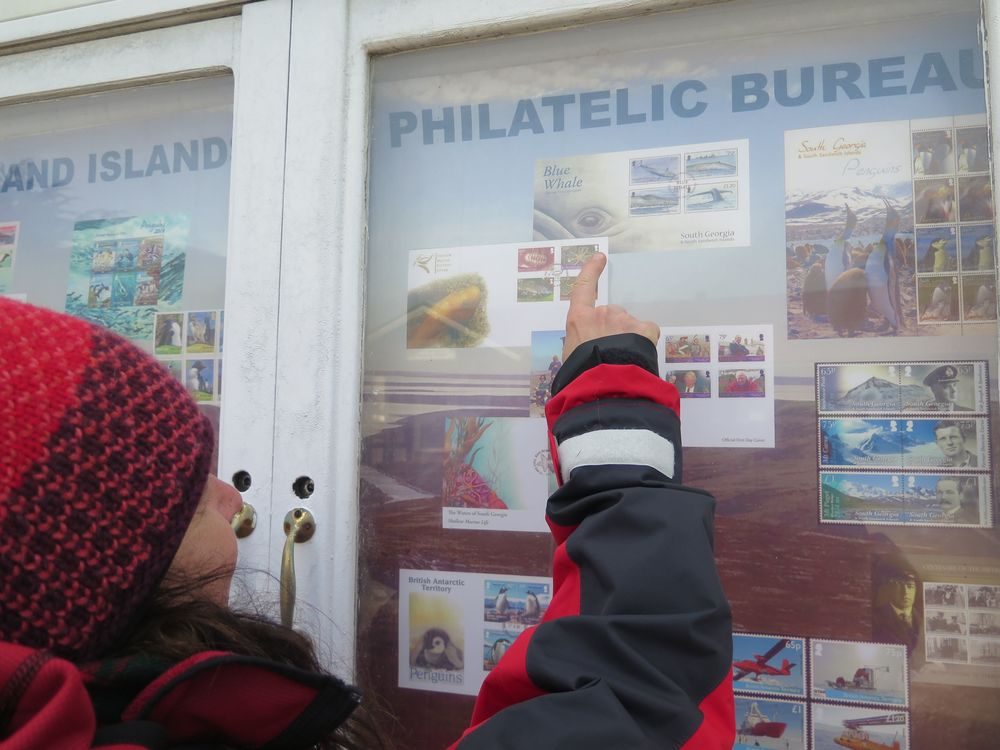 Pamelia went postal shopping for some of the Falklands' beautiful nature stamps.