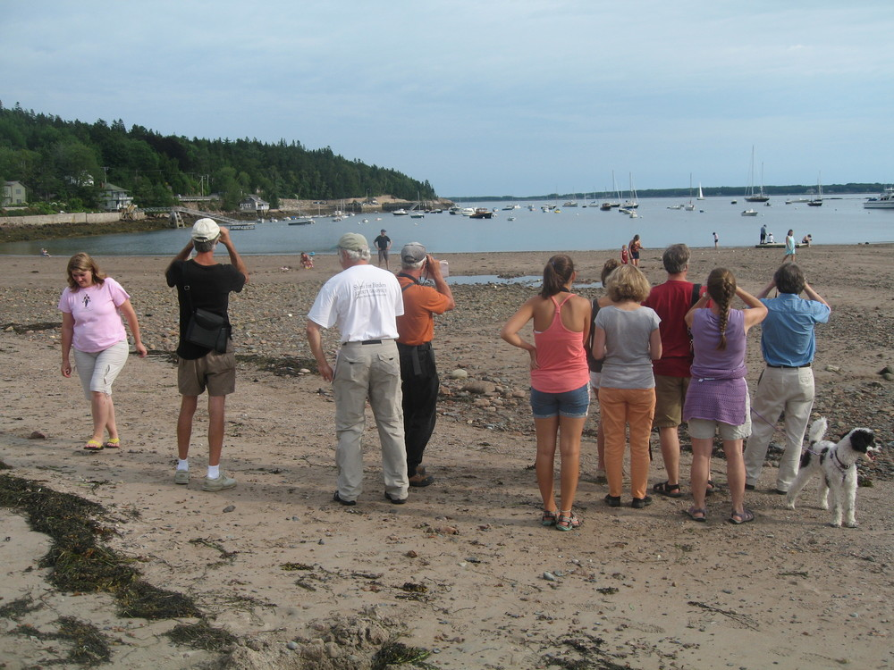 Here's a portion of the group that took part in a Notebook bird walk and talk, led by ornithologist Jeff Wells, senior scientist for the International Boreal Conservation Campaign and author of the new book Maine's Favorite Birds. We're looking at large seabirds called Northern gannets flying over Seal Harbor. In a short walk through woods, park and shoreline within a quarter-mile of the Notebook, we saw and/or heard these species: goldfinch, chickadee, crow, mourning dove, herring gull, dark-eyed junco, black-and-white warbler, black-throated green warbler, redstart, Northern gannet, laughing gull, cedar waxwing, catbird, blue jay, great black-backed gull, double-crested cormorant and song sparrow. And we weren't even looking during the prime birding hours.