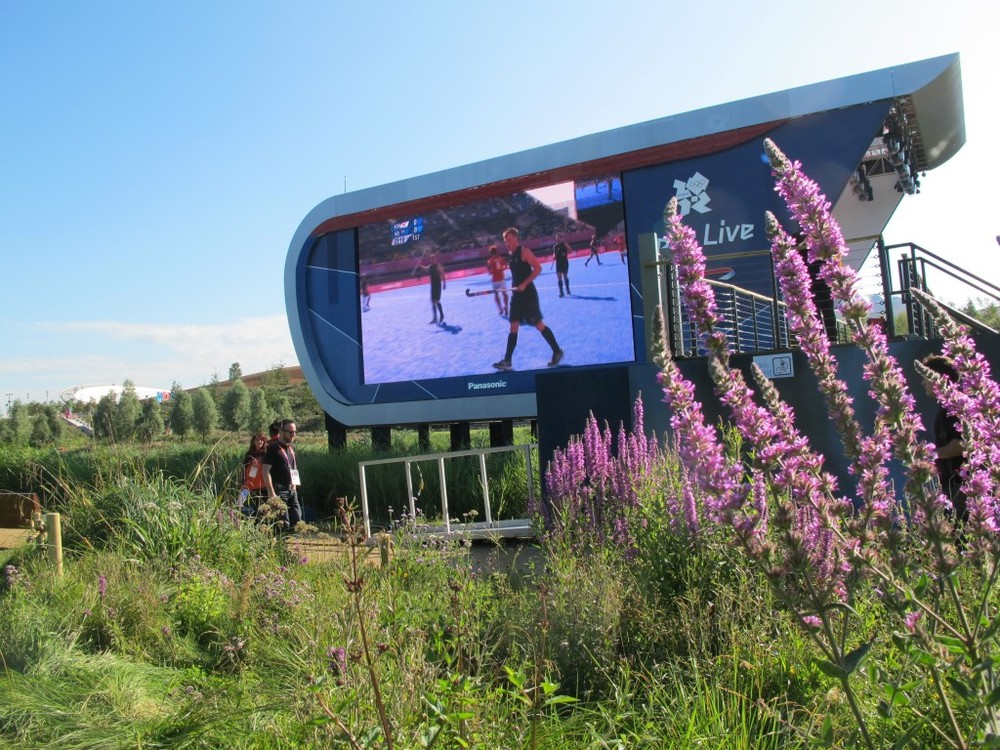An early-morning men's field hockey game was showing on one of the Olympic Park's video screens, set in front of sloped spectator lawns bordered by flowers and tall grasses.