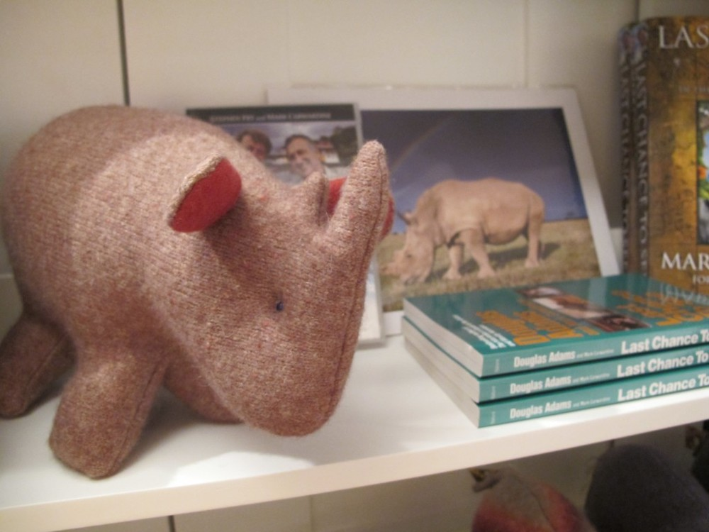 Pamelia asked artist Carolyn Heasly, who hand-makes the greatest wool animals, to create a rhinoceros. We call this one Max, in memory of the rhinoceros highlighted by Mark Carwardine and Stephen Fry in Last Chance to See (background photo).