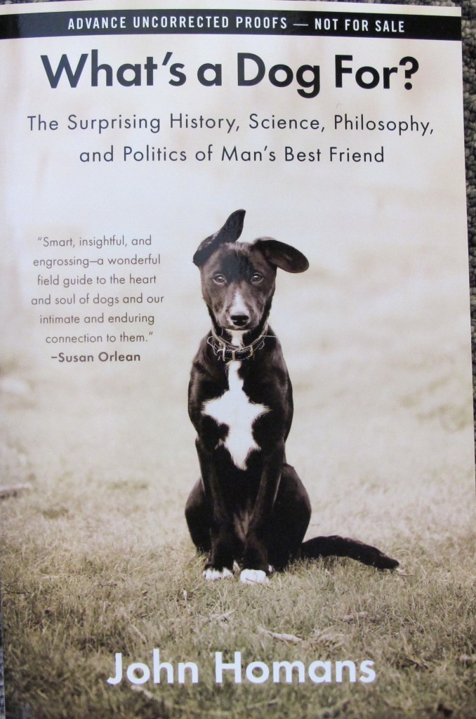 A new book explores the evolution and history of dogs.