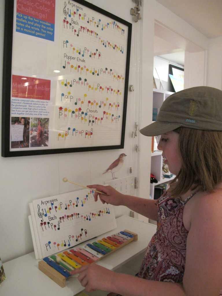 Visitors grab the mallets and tap out color-coded music on the glockenspiel—a test of their brains' ability to read color and use it to guide their hands.