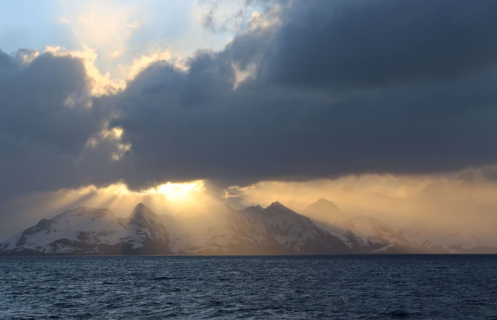 Sunset over South Georgia Island. Coming next: Whaling, rat patrols, rare ducks and 10 a.m. whiskey?