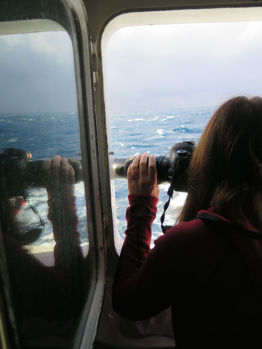 Even in rough conditions, our cabin window afforded Pamelia a good view for photographing birds and other sights.
