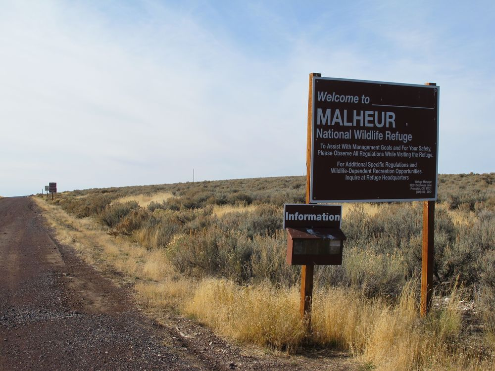 Welcome to Malheur National Wildlife Refuge in southeastern Oregon. It's a key stop for birds on the Pacific Flyway migration route.
