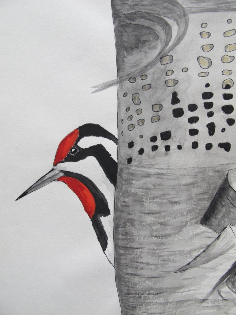 This sapsucker pops its head out in one corner of a larger painting. Bernd has been doing his sapsucker research both at his home and at his beloved cabin in rural western Maine, where he also has conducted much of his raven research over the years.