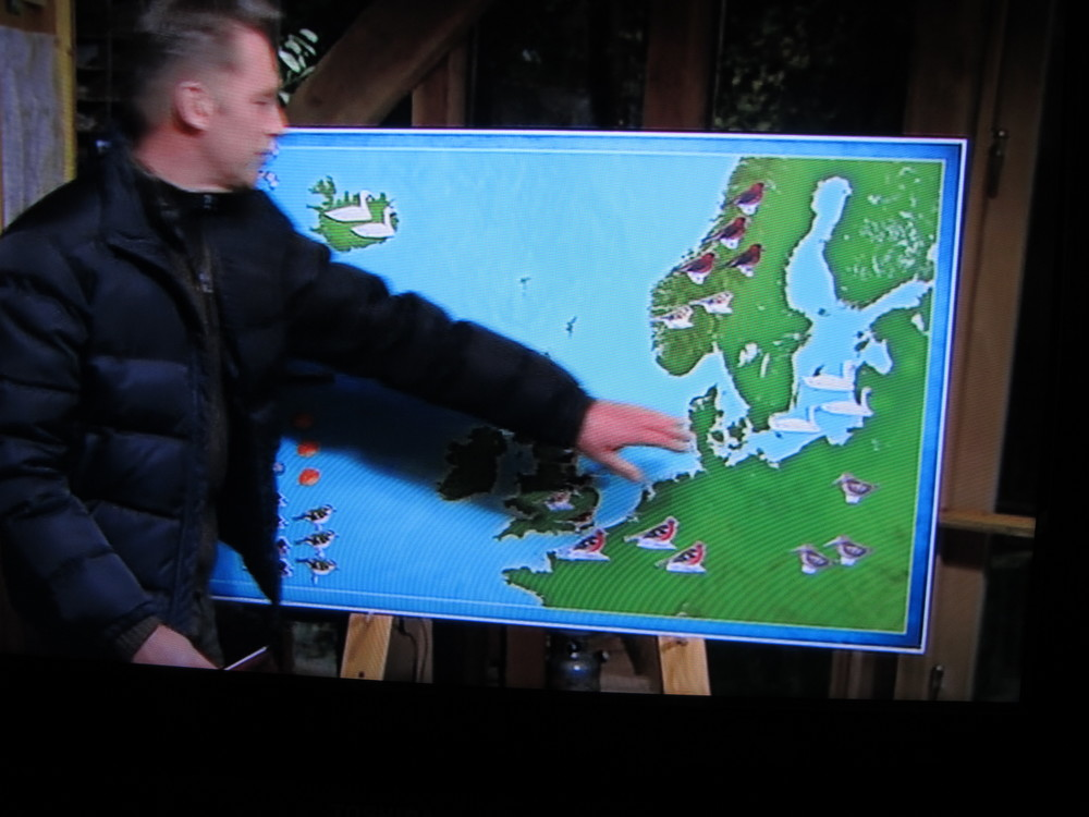 The bird migration forecast from the BBC's prime-time (and charmingly low-budget) nature show—wish we had a program like this in the States.
