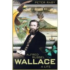 Wallace, the other father of evolutionary theory